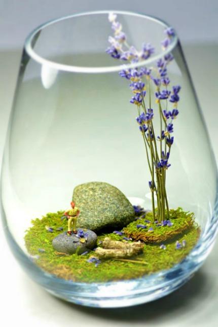 how to make an edible terrarium