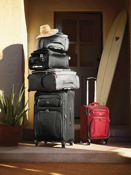 Target Wedding SwissGear Pewter Zurich Luggage