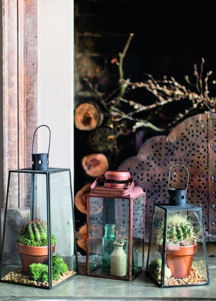 The House Gardener by Isabelle Palmer Cacti in Lanterns