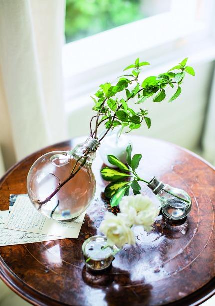 The House Gardner by Isabelle Palmer Light Bulb Vases